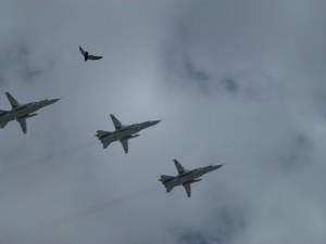 5 mai, répétition de la parade aérienne...un intrus